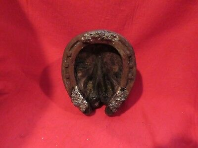 Real Horse Hoof & special shoe  taxidermy Biology Equine Vet study animal craft