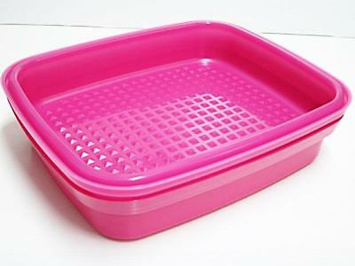 Tupperware Season Serve Marinate Container (1) Pink 1.9L + Free Shipping