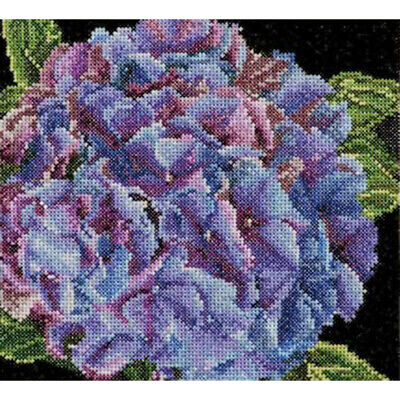 "Thea Gouverneur Hydrangea On Aida Counted Cross Stitch Kit-5.75""X5.5"" 18 Count"