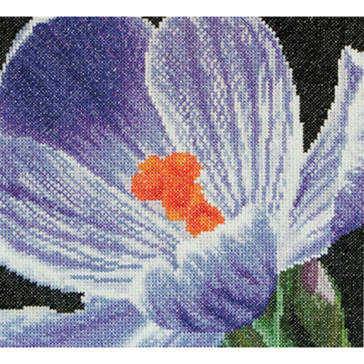 "Thea Gouverneur Crocus On Aida Counted Cross Stitch Kit-5.75""X5.5"" 18 Count"