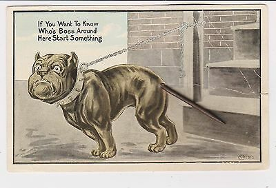 Rare 1911 Boxer Bull Dog Pit Postcard Novelty Moving Spring Tail Schmidt Bros Il