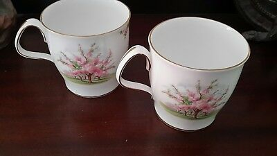Royal Albert English Bone China Matching Cups in Blossom Time Pattern