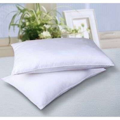 Cottonloft All Natural 100% Cotton Filled Bed Pillow - 2 Pack, White, Standard