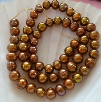 5mm Round COPPER  BROWN  LOOSE Freshwater Pearl 35 CM LONG