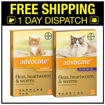 Advocate For Adult Cats & Kittens Fleas Heartworm - 3 Pack All Sizes