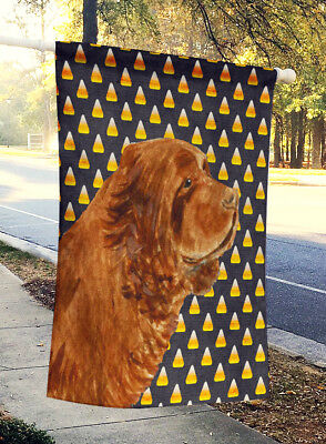 Sussex Spaniel Candy Corn Halloween Portrait Flag Canvas House Size