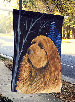 Carolines Treasures  SS8391CHF Starry Night Sussex Spaniel Flag Canvas House Siz