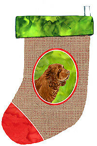 Carolines Treasures  SS2072-CS Sussex Spaniel Christmas Stocking SS2072