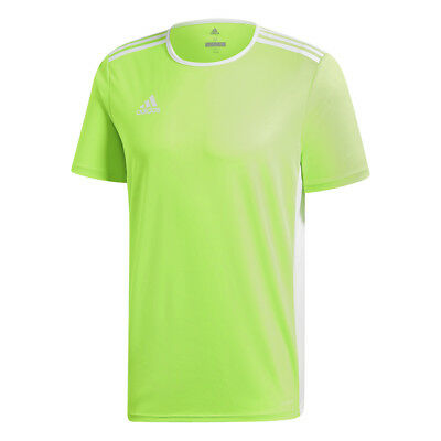 on sale 0ca73 73c42 Maillot Hommes Football Adidas Entrada 18 Ce9758