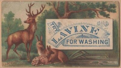 Small Victorian Trade Card-Lavine Soap-Hartford, CT-Deer Family-12 Point Buck