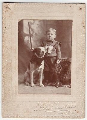 SUPER Cute ca 1890 Victorian Photo - Dog w Bow tie & Boy Holding Trap Arcade NY