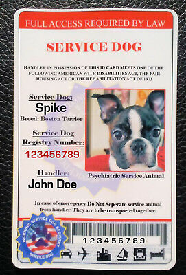 Service Dog Id Card Pvc Service Dog Id Card Pvc Ada Service Animal Card