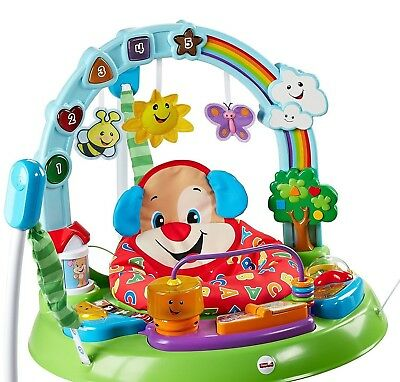 Fisher Price Laugh and Learn Puppy Activity Jumperoo EXCELLENT Condition!!!!