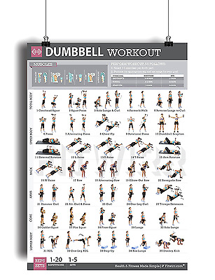 """Dumbbell Exercises Workout Poster - Strength Training Workout Chart Gym 19""""x27"""""""