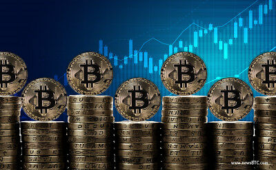 Bitcoin eBook W/ Master Resell Rights Beginners Bitcoin Directly To Your Wallet