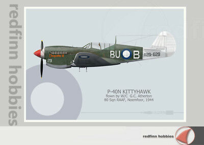Warhead Illustrated P-40N Kittyhawk 80 Sq RAAF W/C G.G Atherton Aircraft Print