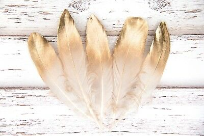 """Large Gold Dipped White Feathers 6-8"""" Great for weddings, crafts, dream catchers"""