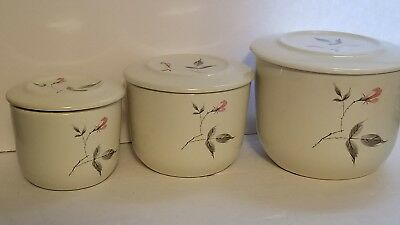 Universal Ballerina Enamel Canisters with Lid Set