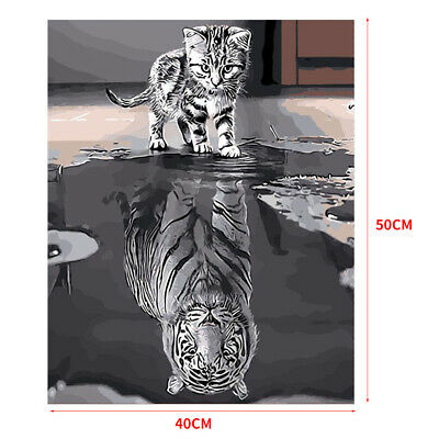 Reflection Cat Unframed Hand Painted By Numbers DIY Oil Painting Art Craft Decor
