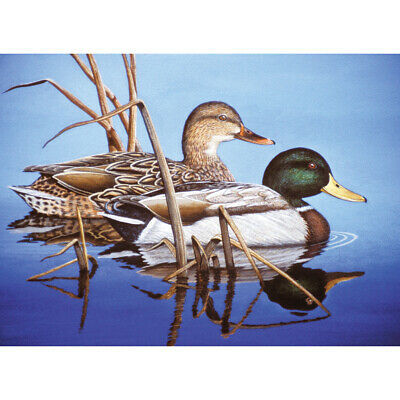 "Royal Brush Paint By Number Kit 15.375""X11.25""-Blue Water Mallards (4Pk)"