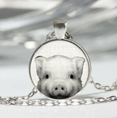 Pig photo Tibet silver dome Glass Cabochon Necklace chain Pendant #396