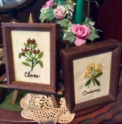 2 Completed Embroidered Herb Flowers Picture Frames, Cinnamon / Cloves, Rustic
