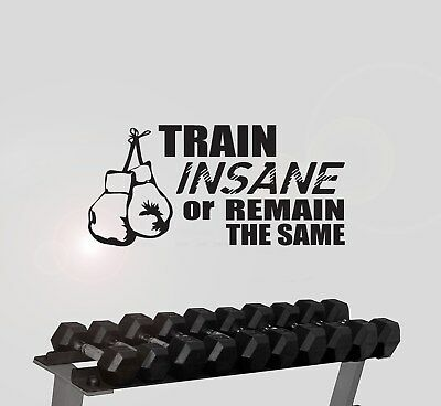 Train insane or remain the same wall sticker boxing boxer  quote gym decal w140