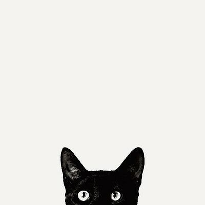BLACK CAT EYES POSTER - cute funny kitten face peeking over ledge at you print