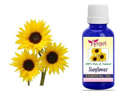 Angel Sunflower 100% Natural Pure Undiluted Uncut Essential Oil 3ML To 1000ML