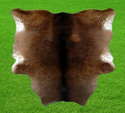 "New Calfhide Rugs Area Cow Skin Leather 7.79 sq.feet (34""x33"") Calf hide A-1167"