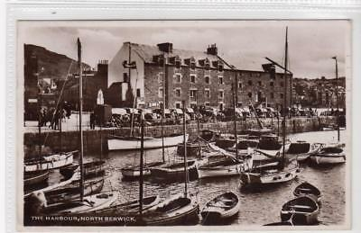 THE HARBOUR, NORTH BERWICK: East Lothian postcard (C32061)