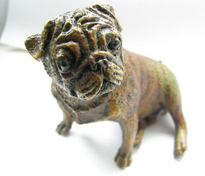 Bergmann Vienna Antique 1900 Cold Painted Bronze Pug Geschutzt No 8142 Stunning
