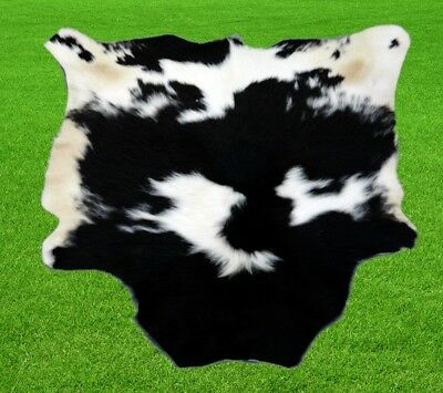 "New Calfhide Rugs Area Cow Skin Leather 7.32 sq.feet (34""x31"") Calf hide A-1150"