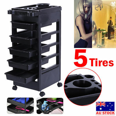 5 Layers Salon Coloring Hair Hairdresser Barber Beauty Spa Trolley Storage Cart