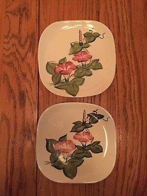 Red Wing Pottery Dessert Plates Morning Glory