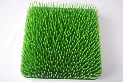 Boon Grass Drying Rack Green Grass Baby Bottle Dryer for Counter Top EUC
