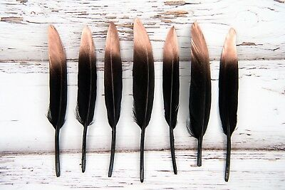 """Painted Rose Gold Dipped Black Feathers 4-6"""" Great for weddings + dream catchers"""