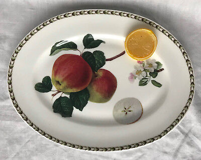 QUEEN'S Oval Platter Apple HOOKERS FRUIT Fine Bone China, Made In India 12""