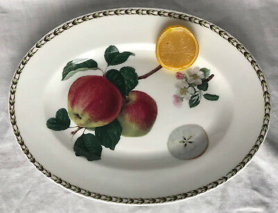 "QUEEN'S Oval Platter 12"" Apple Pattern HOOKERS FRUIT Fine Bone China, India"