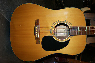 Chester Acoustic Guitar Modell A1