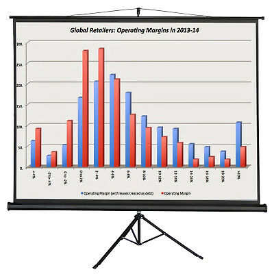 100 Portable Movie Projector Screen w/ Tripod Stand Cinema Theater Movie 4:3