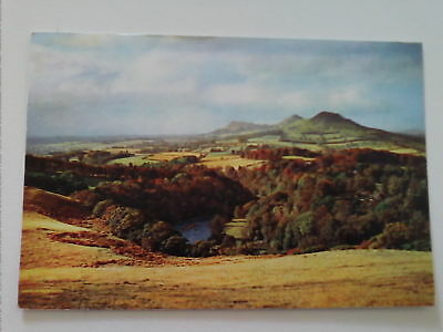 Postcard The Tweed at Bemersyde Roxburghshire Scotland PM 1965       (A1)