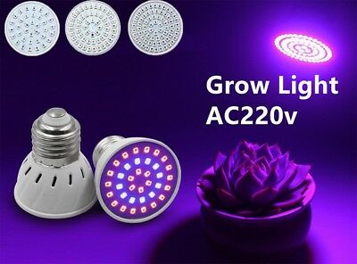 E27 LED Bulb Grow Light 6W 8W 10W 2835 SMD Plant Flower Hydroponic Aquarium Lamp