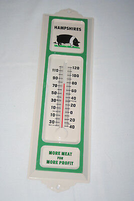 Hampshires  hog  pig More Meat for Profit   thermometer