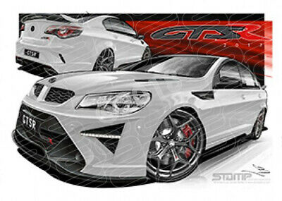 Hsv Gtsr V455 Gtsr Heron White Stretched Canvas (V455)
