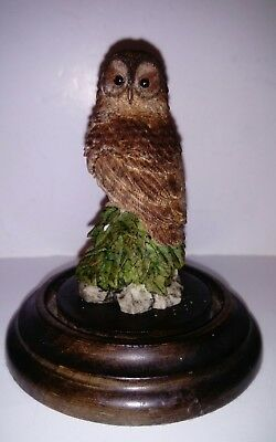 Tawny Owl Sculpted by Michael Langford 1989 - Country Artists - Hand Painted