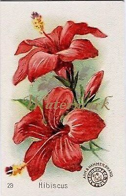 Antique Vintage Trading Card Fabric Quilt Block Hibiscus Floral AM29