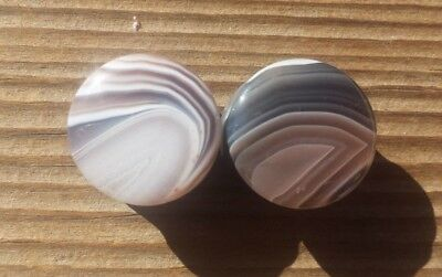 Rare! Pair Of Real Botswana Agate Plugs Gauges Body Jewelry Double Flared