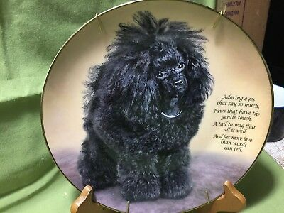 DANBURY MINT Adoring Eyes PLATE FROM CHERISHED POODLES COLLECTION Number  C8415