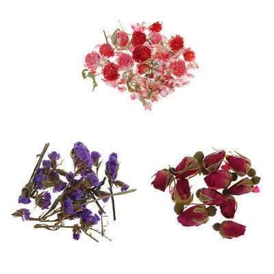 4g Natural Real Dried Flowers for Art DIY Craft Jewelry Making Resin Casting